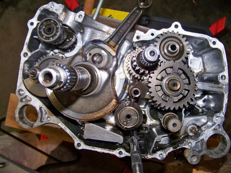 2006 Honda 350 Rancher Engine Diagram 2014 Jeep Trailer Wiring Diagram Jeepe Jimny Pujaan Hati Jeanjaures37 Fr