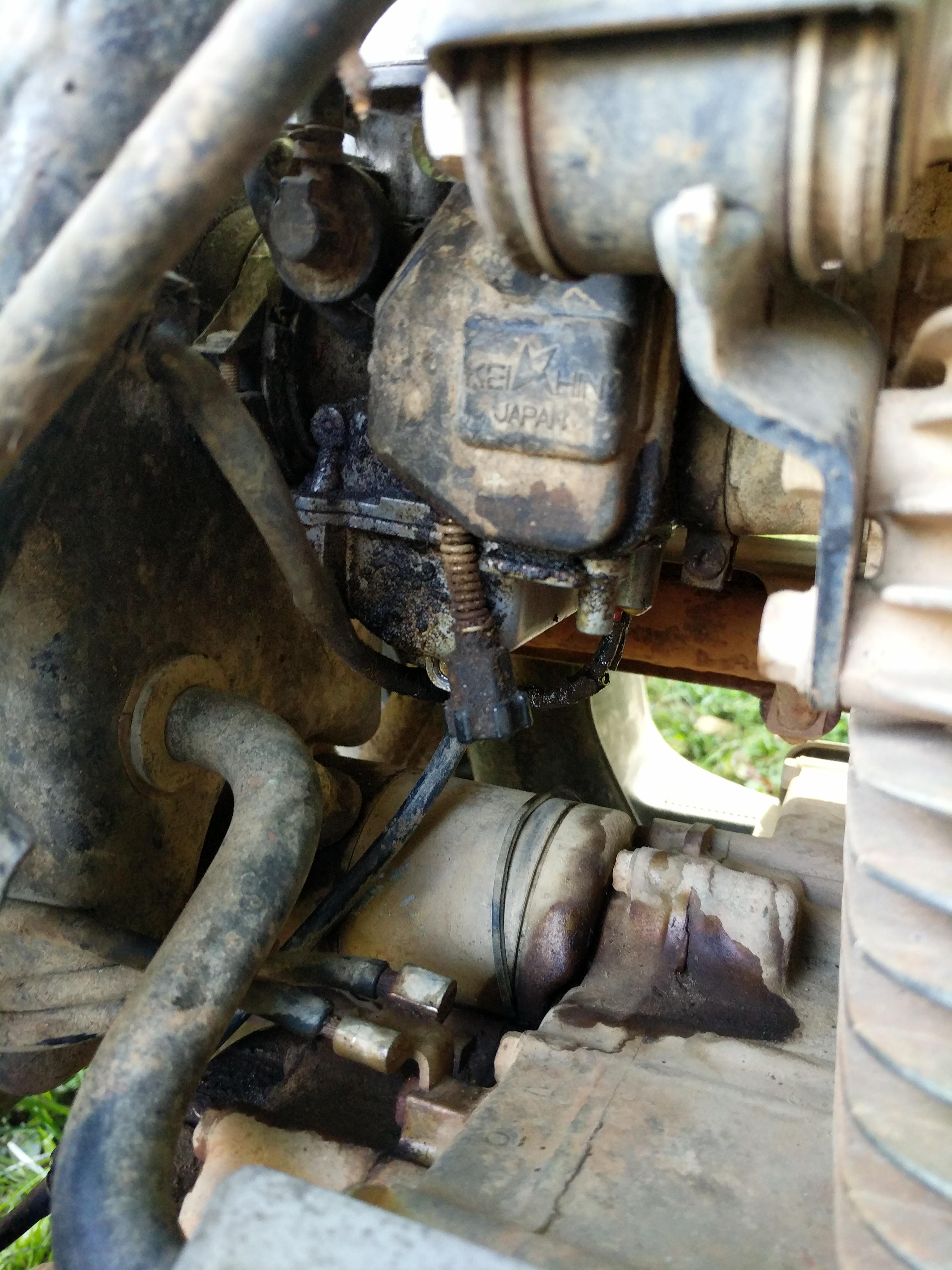 carburetor leaking gas