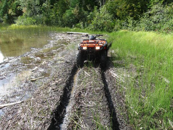 Best Mud Tire Page 4 Honda Atv Forum