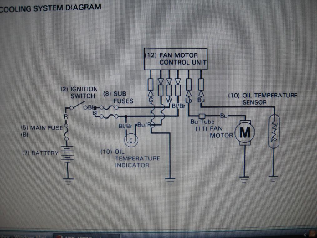 Pin Cdi Wiring Diagram Pit Bike Wiring Harness Diagram Tao Tao