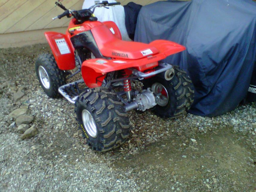 "Yet another ""Will It Fit"" question - 2003 TRX250EX - Honda ..."